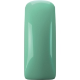 Magnetic Gelpolish The Look Is Mint 15 ml